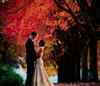 Herfstbruiloft bruidspaar bos